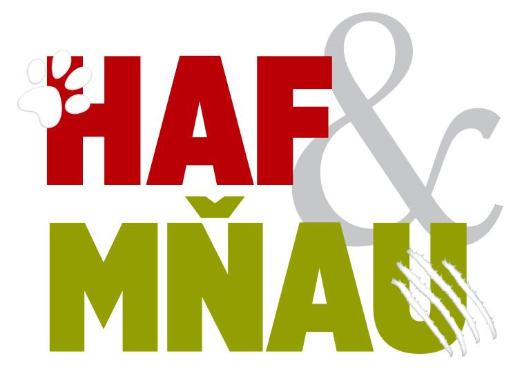 8f80b5437c1 Koupí časopisu Haf   Mňau přispíváte na útulky.
